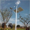 8 meters Height Wind-Solar Hybrid Street Light