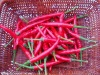 Paprika Pellet for red pigment
