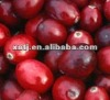 antioxidant of cranberry juice powder