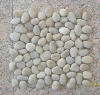 Mesh -mounted White Pebbles and cobbles