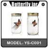 Valentine's Day Gift Butterfly In A Jar