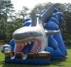2011 HOT commercial Tropical inflatable slide (Slide)
