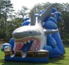 2011 HOT commercial Tropical inflatable slide (Slide)