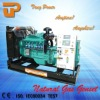 Green power Natural gas genset