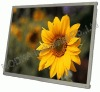 "8.4""/10.4""/12""/15""/19""Sunlight readable LCD Monitor"