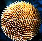 poplar toothpick