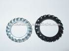 External teeth serrated lock washers