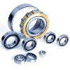 NU316E Cylindrical Roller Bearing