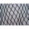 Plastic Anti-Bird Netting