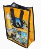 pp woven portable cooler bag
