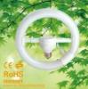 Circular energy saving light