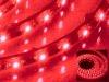 LED flexible strip lamp,LED lighting,LED lamp,LED Light