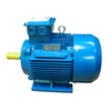 Y2 series 2 pole three phase asynchronous motor