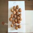2012 GY Walnut in shell