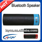 Portable Bluetooth Speaker (BP071C)