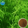 Pure Natual Bamboo Leaf Extract /flavone, internal ester, silica