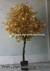 Ficus tree ,Ficus Bonsai ls-0414