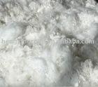 cotton fiber