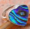 SLR014 shell ring