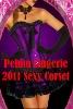 wholesale gothic purple corset dress
