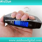 Digital LCD electric fish scale