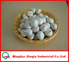 JQ Natural Garlic From Jinxiang China