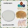 Cordyceps Sinensis Extract: