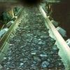 Belt conveyor for mining