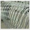 Concertina razor barbed wire fence