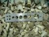 IQF Baby Oyster Mushroom