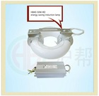 eco friendly environmentally round induction lamp tube low frequecny 40W 100-300V 347V energy saving light