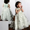 Organza Skirt with Appliqued Flowers 2012 Flower Girl Dress