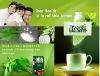 stevia 95%/stevioside/sweetener