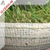 Dogs artificial grass