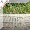 Dogs artificial grass