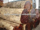 Hot sale rosewood fresh from Burma