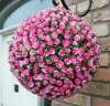 Artificial 40cm Plastic Pink Rose bud detail Flower Ball Garden Decoration ---- Largest factory