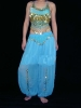 Belly costume, party costumes, carnival costumes,dancing costumes