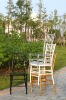 Clear wedding resin chiavari chair
