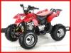 110CC QUAD ATV 110