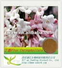 antibiotic of natural cloves extract