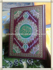 Quran Read Pen M10 with big size