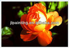 latest design 3D pp placemats of rose
