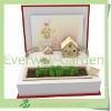 Plant Grow Box