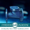 Cast Iron Flange Ball Check Valve