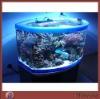 Large High Grade Home Acrylic Aquarium