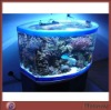 Large High Grade Home Acrylic Aquarium