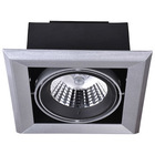 Shenzhen new arrival commercial 15W COB LED down light for clothing shop with ar111 lamp