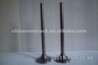 Hot Sale Intake Valve & Exhaust Valve