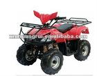 110cc ATV (GT110L-1)
